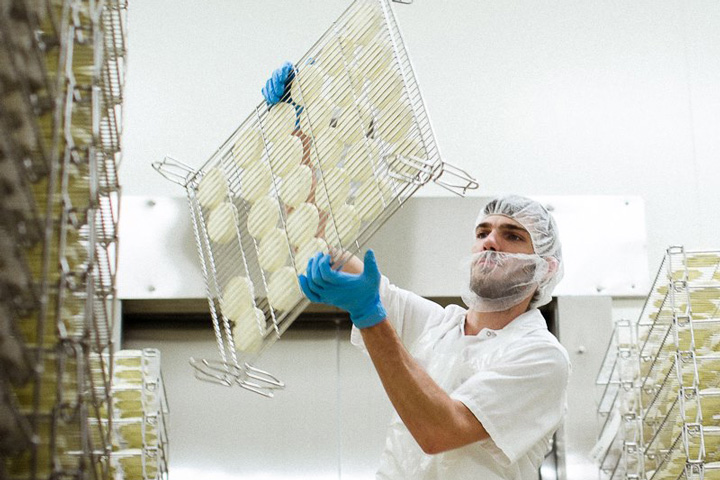 Man wearing mask and gloves inspects a tray of cheeses VTP